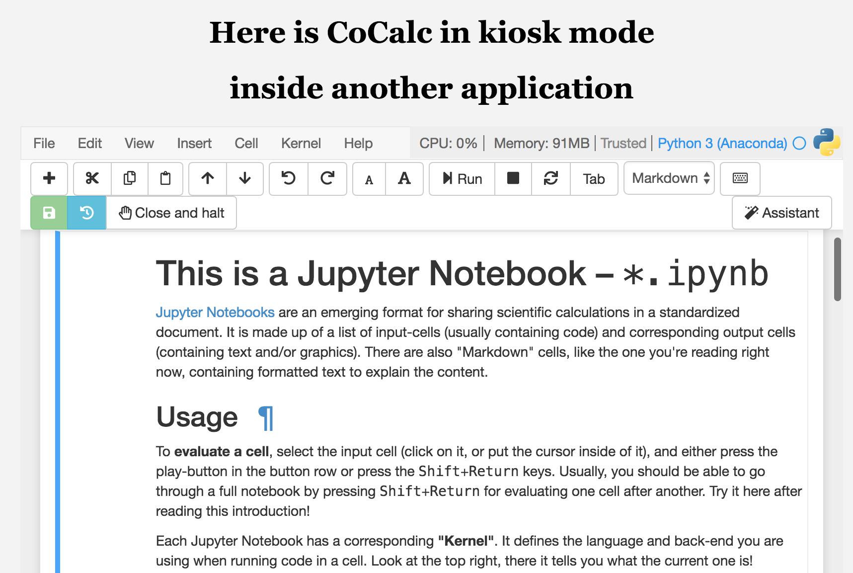 Jupyter notebook markdown latex